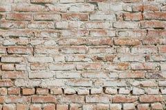 vägg för textur för bakgrundstegelsten gammal Abstrakt textur för formgivare Royaltyfri Foto