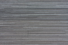 vägg för textur för bakgrundsväxt liten Royaltyfri Fotografi