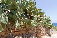 Vägg för torr sten på den Spinalonga Kreta Royaltyfri Fotografi