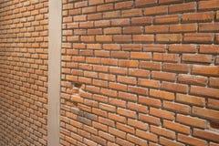 vägg för trädgård för framdel för tegelstenbrownblomma Royaltyfria Foton