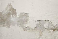 Vägg för vitt cement med skalning av målarfärg royaltyfri foto