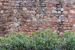 Vägg inom det Humayun's komplexet i Delhi Arkivfoto