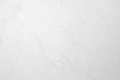 Vägg med skalningsmurbruk Royaltyfri Fotografi