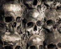 Vägg mycket av skallar och ben Royaltyfri Fotografi