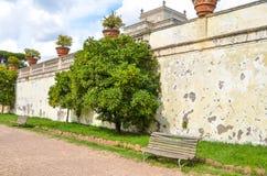 Vägg och bänk i villan Doria Pamphili, Roma fotografering för bildbyråer