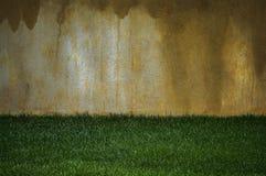 Vägg och gräs Arkivbild