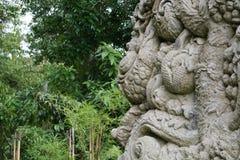 Vägg och lättnad i Bali Indonesien med djungeln i baksidan Royaltyfri Fotografi