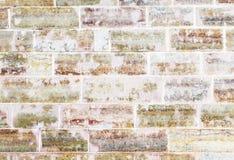 Vägg som göras av färgrika red ut tegelstenar Fotografering för Bildbyråer