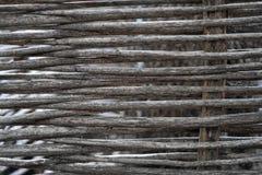 Vägg som samlas från trädfilialer, som en naturlig bakgrund royaltyfria foton