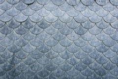Vägg som täckas med fjälliga beståndsdelar av flingan för fintrådigt material Arkivbilder