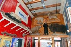 Väggapotek, South Dakota, USA royaltyfri bild