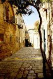 Väggar av hus på gatorna av Montenegro royaltyfri bild