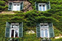 Väggarna av det italienska huset täckas med lösa druvor royaltyfria bilder