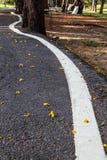 Väggatan eller asfalt texturerar med buktar fodrar Royaltyfri Foto