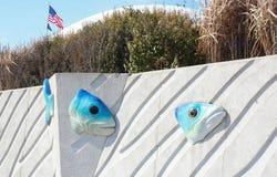 Väggen av det New York akvariet Arkivfoton