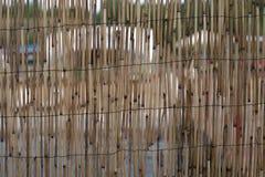 Väggen gjorde ‹för †av bambu Royaltyfria Foton