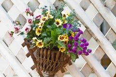 Väggen monterade hängande korgar med ett område av sommar blommar royaltyfria foton