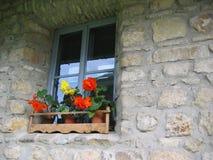 väggfönster Royaltyfri Foto