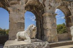 Väggfragment av den antika romerska amfiteatern med en lejonmonument Arkivfoton