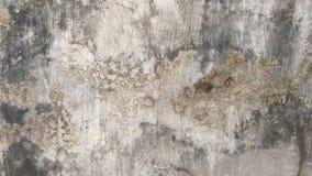 Väggklassiker av cement royaltyfria bilder