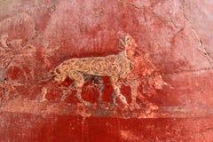 Väggmålning av djur i Roman Pompeii, Italien Royaltyfria Bilder