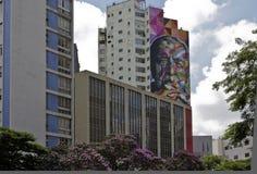Väggmålning från den brasilianska grafittikonstnären Kobra i Sao Paulo Royaltyfria Bilder