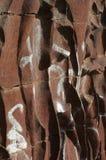 Väggskulptur Arkivfoto