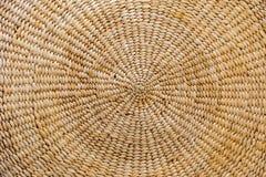 Väggtabell i mottaganderummet, vattenhyacint Arkivbild