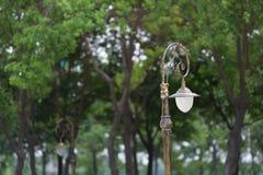 Väglampa och träd Royaltyfri Bild