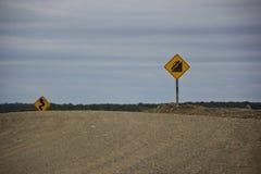 Vägmärken för farliga vägar i Argentina royaltyfria bilder