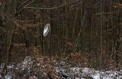 Vägspegel i buske nära skogvägen arkivfoton