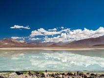 Vägtur i Anderna Arkivfoton