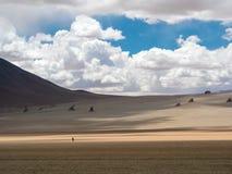 Vägtur i Anderna Arkivbilder