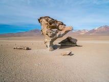 Vägtur i Anderna Fotografering för Bildbyråer