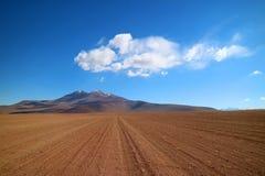 Vägtur i den Eduardo Abaroa Andean Fauna National reserven, Sur Lipez landskap, Potosi avdelning av Bolivia royaltyfri fotografi