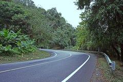 Vägväg Asphalt Right Turn Forest Landscape fotografering för bildbyråer