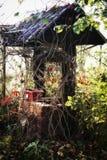 Väl i trädgård i höstsäsong Arkivbilder