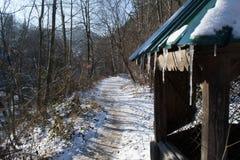 Väl med istappar i skogen bland bergmaxima arkivbild