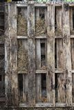 Väl red ut wood paletter på lantgården arkivbild