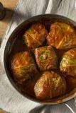 Välfylld kål Rolls för hemlagat nötkött Arkivbild