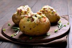Välfylld potatis med bacon, ost och salladslöken royaltyfri bild