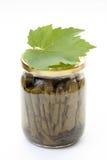 välfylld vine för leaves arkivbild