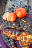 Välfyllda aubergine som bakas på gallret arkivfoton