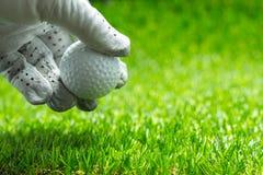 Välj upp en golfboll på grönt gräs royaltyfria foton