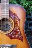 Välj vaktdetaljen av 60-tal Antoria för den akustiska gitarren Royaltyfri Bild