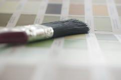 Välja din färg Arkivbilder