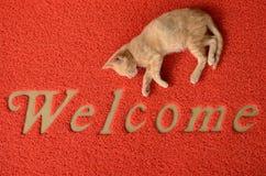 Välkommen dörrmatta Arkivbild