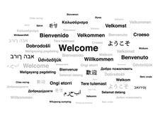 Välkommet uttryck i olika språk av världen royaltyfri illustrationer