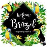 Välkomnande till Brasilien! Vektorillustration av tropiska fåglar royaltyfri illustrationer