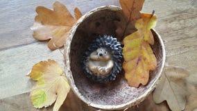 Välkomnande till hösten Arkivbild